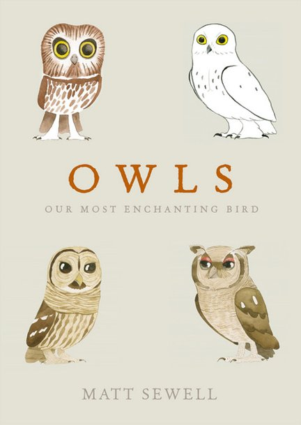 Matt Sewell - Owls