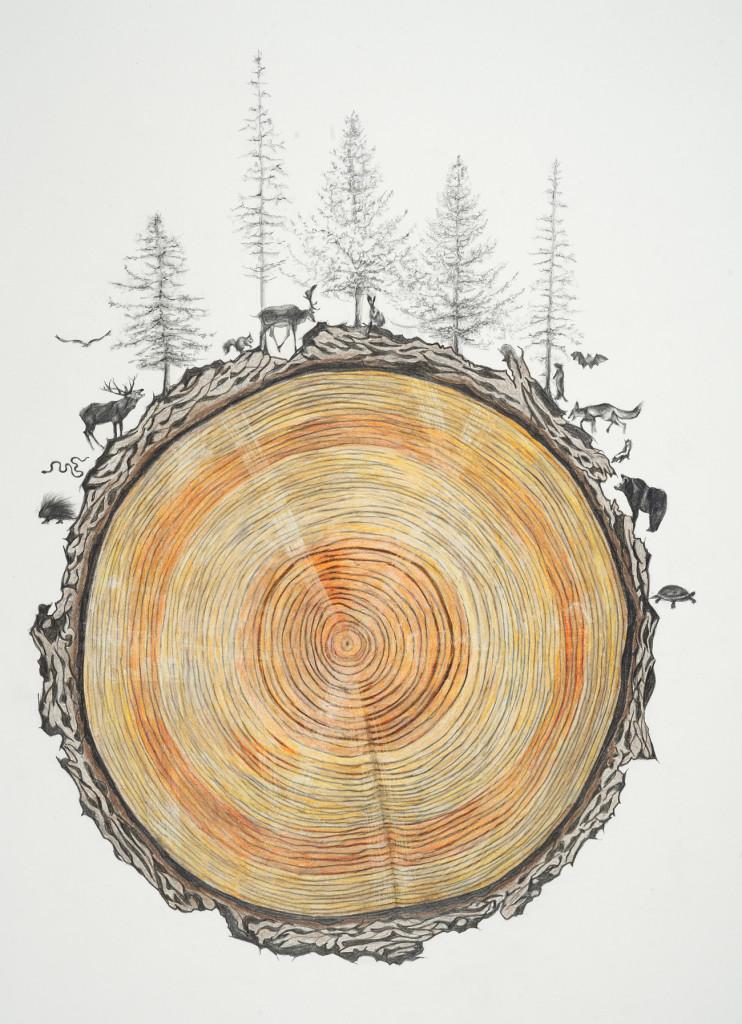 Rebecca Clark, Family Tree