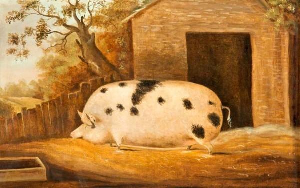 John Miles, Gloucester Old Spot, 1834